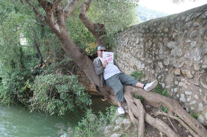 Lekker lui in een Mallorquinse boom